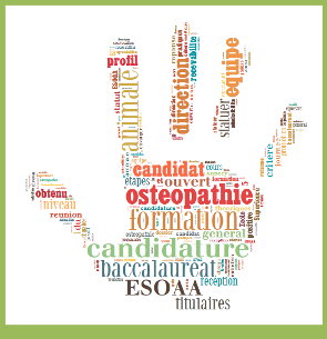 wordle-recrutement-p